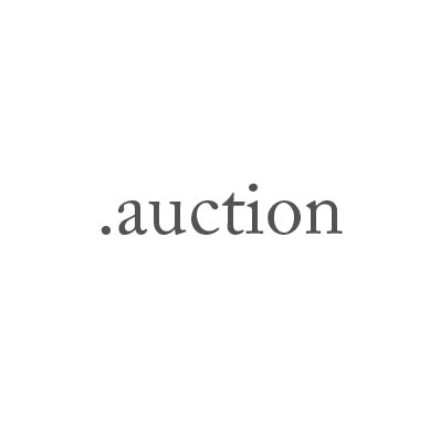 Top-Level-Domain .auction