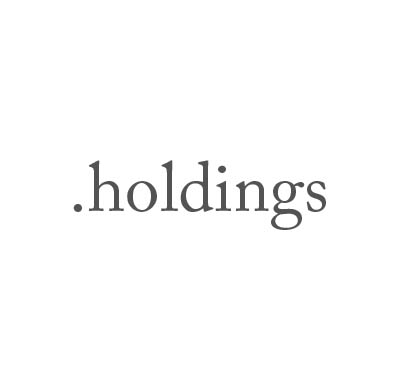 Top-Level-Domain .holdings