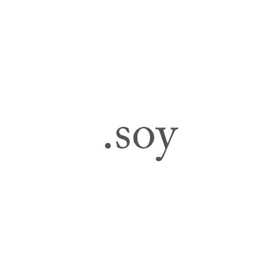Top-Level-Domain .soy
